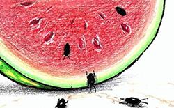 """""""Gıdamızın Bozulan Kimyası"""" konulu ulusal karikatür yarışması sonuçlandı"""